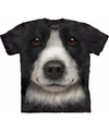 Honden t shirt border collie voor kinderen