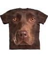 Honden t shirt bruine labrador