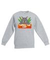 Sweater grijs voor kinderen met kitty cat