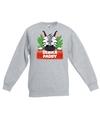 Sweater grijs voor kinderen met paddy de zebra