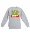 Sweater grijs voor kinderen met spiky de dinosaurus