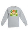 Sweater grijs voor kinderen met tony the tiger