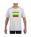 T shirt met litouwse vlag wit kinderen